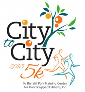 City To City Logo 2013 800x871 flat